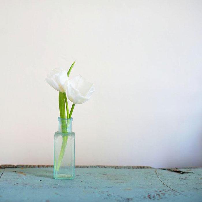 |  reminders of Spring  |