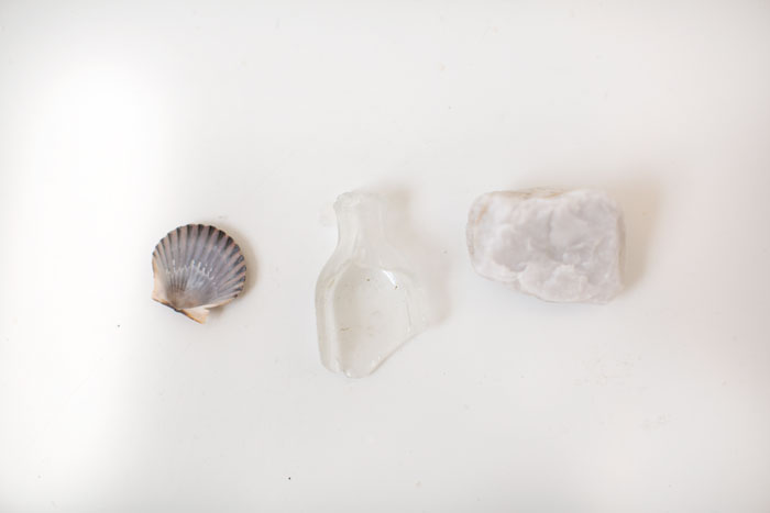 ::  natural findings from the shore  ::