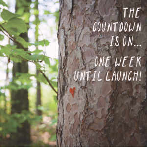 the countdown begins…